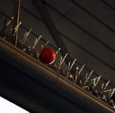 Orange Ball erhalten in den anti--pidgeons Nadeln fest Lizenzfreie Stockfotografie