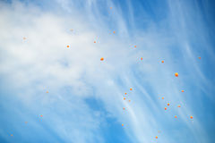 Orange ballons in the sky Royalty Free Stock Photo