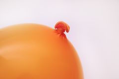 Orange balloon. Isolated orange balloon royalty free stock photos