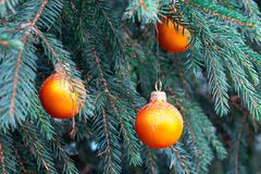 Orange balls on spruce, part of the Christmas tree with Christmas decorations stock photo