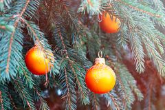 Orange balls on spruce, part of the Christmas tree with Christmas decorations.  royalty free stock photos