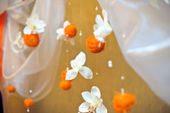 Orange balls and white flowers Royalty Free Stock Photo