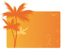 Orange banner with palm. Banner with palms and floral ornament Royalty Free Stock Images