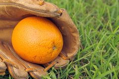 Orange in baseball glove Stock Images
