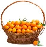 Orange in a  basket Stock Photos