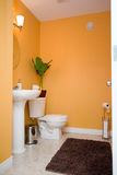 Orange Bathroom. A bright orange bathroom with toilet and sink royalty free stock photo