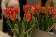 Orange. A beautiful arrangement of flowers next to a mirror at ids15 Stock Photo