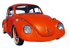 Orange Beetle Stock Photo