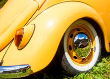 Orange beetle in a sunny day Royalty Free Stock Photography