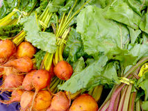 Orange beets. Bright orange beets at the farmers market stock photo