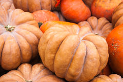 Orange and beige pumpkins Royalty Free Stock Photos