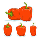Orange bell pepper,sweet pepper or capsicum Royalty Free Stock Images