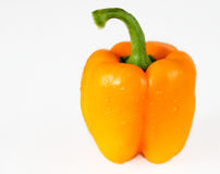 Orange Bell Pepper with Water Droplets in White Background Royalty Free Stock Images
