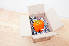 Orange bell pepper wrapped up in a box Royalty Free Stock Image