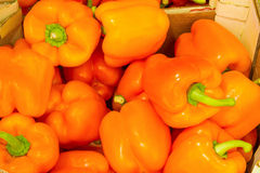 Orange bell peppers. Grocery store Royalty Free Stock Photos