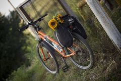 Orange bicycle standing near iron fence Stock Image