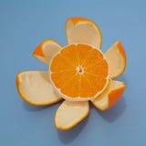 Orange bien épluchée image libre de droits