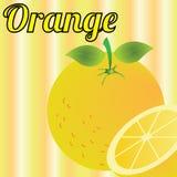 Orange. Big orange on special yellow lines background Stock Image