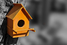Orange bird house Stock Images