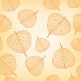Orange Blätter, nahtlos Lizenzfreie Stockfotos