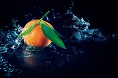 Orange on a black background with water Stock Photos