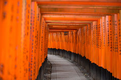 Orange and Black Covered Hallway Stock Photography