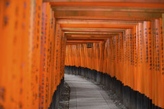 Orange and Black Covered Hallway Royalty Free Stock Photos