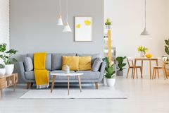 Orange blanket on grey sofa in modern apartment interior with po