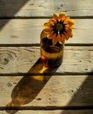 Orange blomma i en blottle Arkivfoto