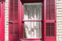 Orange blomma, vit ren gardin och rött fönster fotografering för bildbyråer