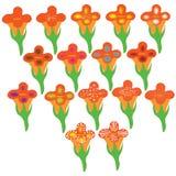 Orange blommagrupp en Arkivfoton