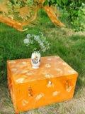 Orange blommor för askbröstkorgvas Royaltyfri Fotografi