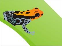 Orange blue frog. On leaf royalty free illustration