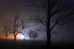 A foggy night lit up by orange and blue lights revealing a creepy scene with bare trees Stock Image