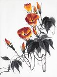 Orange Blume der Winde Stockbild