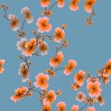 Orange Blumen des nahtlosen Musters des Aquarells auf einem Ruhehintergrund Lizenzfreie Stockbilder