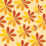 Orange Blumenhintergrund Stockbild