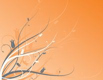 Orange Blumenmotiv Lizenzfreies Stockfoto