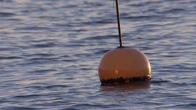 Orange Boje, die auf Meereswogen bei Sonnenuntergang (Zeitlupe, schwimmt) stock footage
