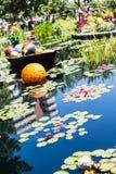Orange boll och Lilly Pads Royaltyfria Bilder