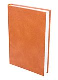 Orange book standing isolated Royalty Free Stock Image
