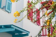 Orange Bouganvilla, Papierblumen auf Hintergrund des Farbfensters stockbilder