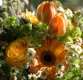 Orange bouquet Royalty Free Stock Photos