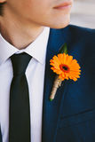 Orange Boutonniere. Groom in the wedding suit stock image