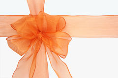 Orange bow. On a white background Stock Image