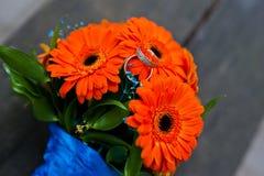 Orange bröllopbukettgerbera Fotografering för Bildbyråer