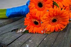 Orange bröllopbukettgerbera Royaltyfri Foto