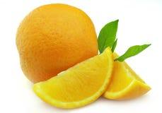 Orange with branch Stock Photos