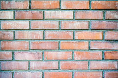 Orange Brick background. Detail of brick background royalty free stock photos