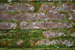Orange Brick With Moss Royalty Free Stock Photography